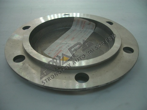HUB CAP COVER (REAR)